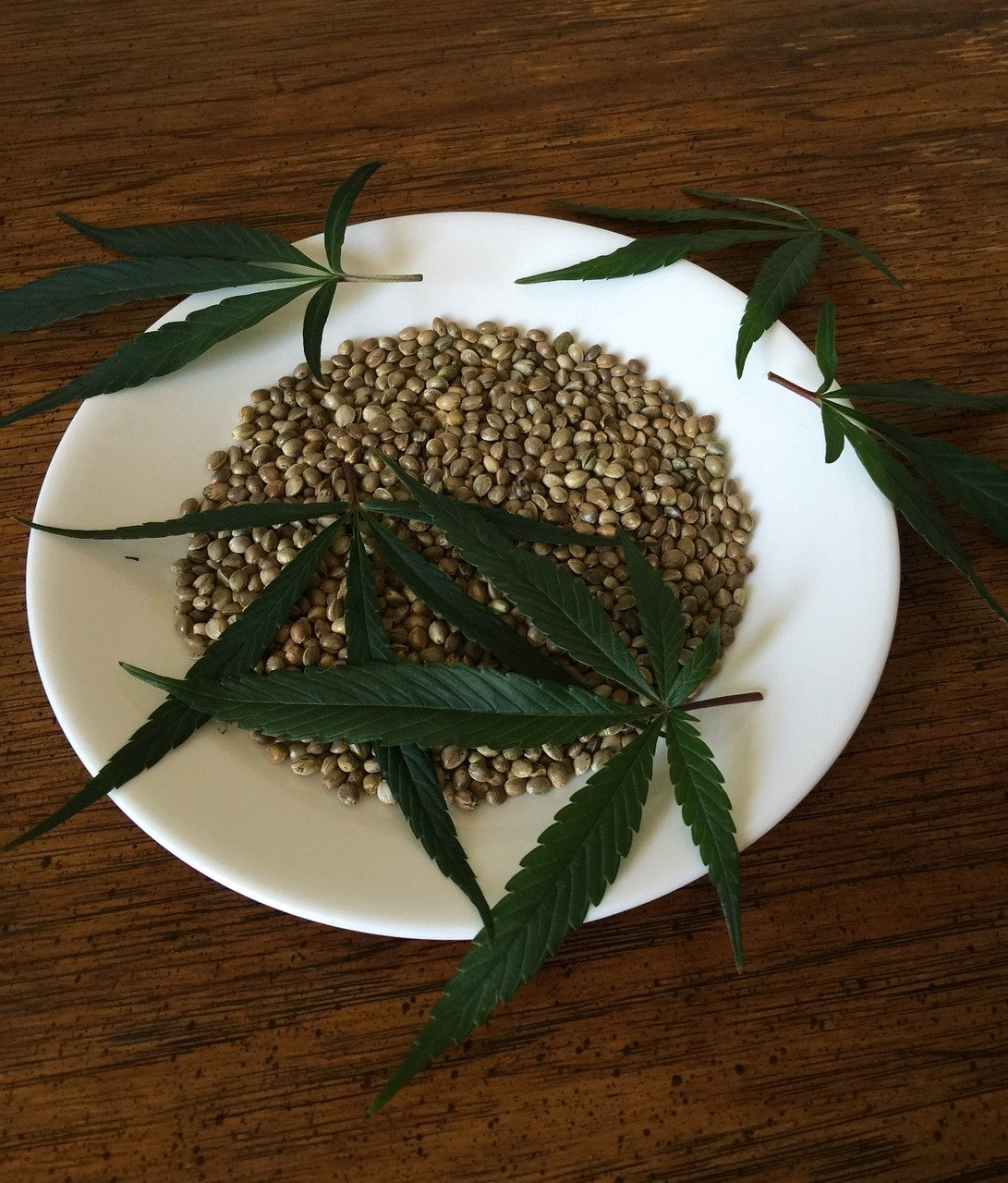 cannabis-hemp-cooking-oils