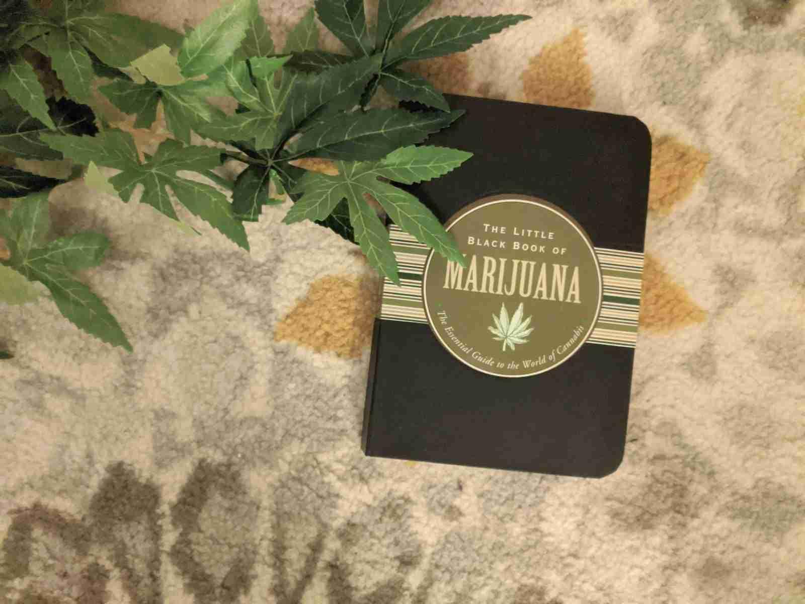 Little Black Book of Cannabis
